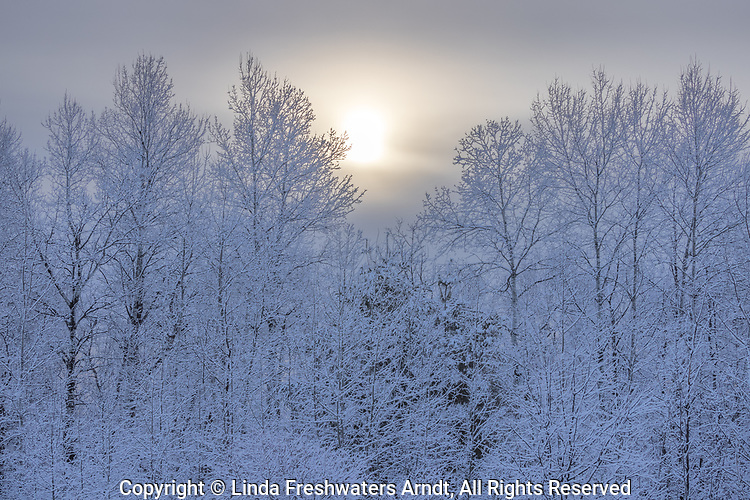 Beautiful winter landscape in northern Wisconsin.