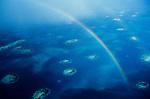 Belize; Rainbow; Reefs; Island