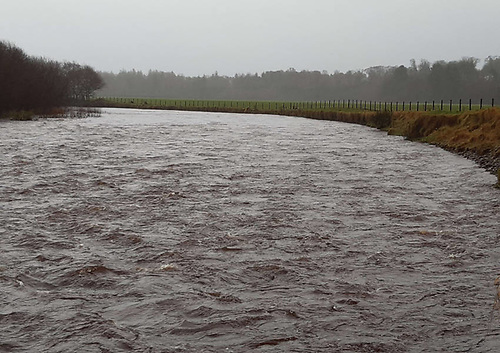 Before the riverbank enhancement works on the Owenkillew River in Co Tyrone | Credit: Loughs Agency