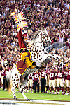 in the first half of an NCAA college football game in Tallahassee, Fla., Saturday, Sept. 28, 2019.