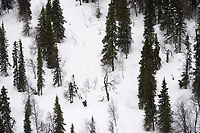 Aerial of Team on Trail Between Rainy Pass & Finger Lake 2005 Iditarod