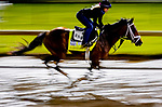 April 29, 2021: Sainthood, trained by trainer Todd Pletcher, exercises in preparation for the Kentucky Derby at Churchill Downs on April 29, 2021 in Louisville, Kentucky. Scott Serio/Eclipse Sportswire/CSM