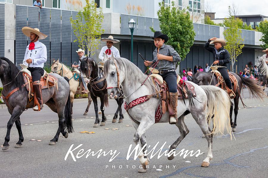 Cowboy riding white horse, Kent Cornucopia Days, Kent, Washington State, WA, USA.
