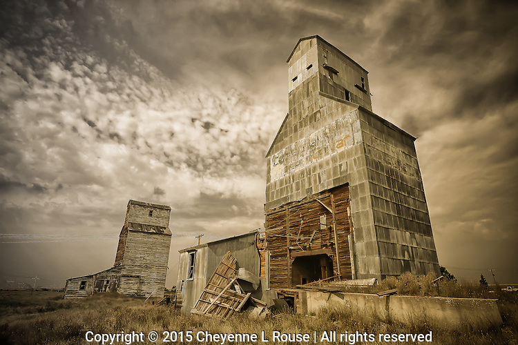 Ghosts of the Harvest - Montana
