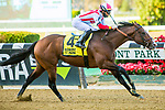 OCT 03, 2020 : Complexity with Jose Ortiz aboard, wins the Grade 2 Kelso Handicap, going 1 mile at Belmont Park, Elmont, NY.  Sue Kawczynski/Eclipse Sportswire/CSM