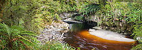 Moria Gate, limestone rock formation with Oparara River, Kahurangi National Park, West Coast,  Buller Region, New Zealand, NZ