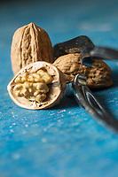 Gastronomie Générale/ Noix //  Walnut