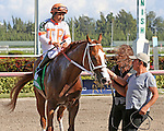 HALLANDALE BEACH, FL - JANUARY 21:  #5  Early Entry (FL) with jockey Paco Lopez heads to the winners' circle after winning the Sunshine Millions Sprint at Gulfstream Park on January 21, 2017 in Hallandale Beach, Florida. (Photo by Liz Lamont/Eclipse Sportswire/Getty Images)