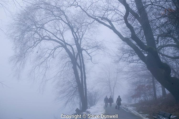 Jamaica Pond winter fog, Boston
