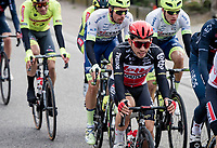 Caleb Ewan (AUS/Lotto-Soudal) <br /> <br /> 108th Scheldeprijs 2020 (1.Pro)<br /> <br /> 1 day race from Schoten to Schoten BEL (173km)<br /> <br /> ©kramon