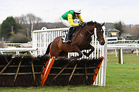 Paricolour ridden by Fergus Gillard jumps the last in The Extech Cloud-Humanising It Handicap Hurdle during Horse Racing at Plumpton Racecourse on 10th February 2020