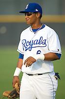 Yenssi Reyes  (6) of the Burlington Royals at Burlington Athletic Park in Burlington, NC, Saturday, July 26, 2008. (Photo by Brian Westerholt / Four Seam Images)
