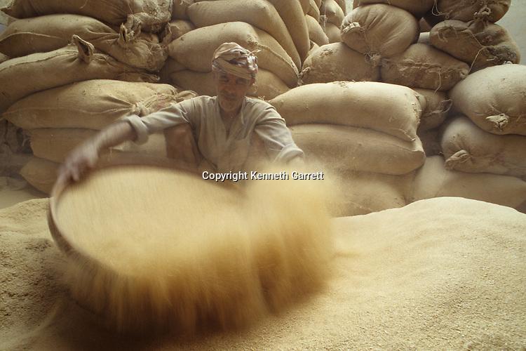 Egypt's Old Kingdom, Daily life, wheat winnowing