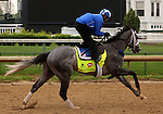 LOUISVILLE, KY - APRIL 23: Mohaymen (Tapit x Justwhistledixie, by Dixie Union) gallops on track with exercise rider Miguel Jaime, Churchill Downs, Louisville KY, preparing for the Kentucky Derby. Owner Shadwell Stable, trainer Kieran McLaughlin. (Photo by Mary M. Meek/Eclipse Sportswire/Getty Images)