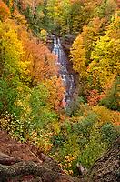 Landscapes: fall color