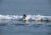 Surfer riding the waves at  New Hampshire 's seacoast, which is part of the New England USA seacoast