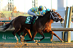 LOUISVILLE, KY -NOV 25: Road to Victory #5 Julien Leparoux) wins the 74th running of the G2 Golden Rod Stakes at Churchill Downs, Louisville, Kentucky. Owner John C. Oxley and Gary Barber, trainer Mark E. Casse. By Quality Road x Favoritism, by Tiznow. (Photo by Mary M. Meek/Eclipse Sportswire/Getty Images)