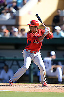 St. Louis Cardinals outfielder Rafael Ortega (60) during a spring training game against the Detroit Tigers on March 3, 2014 at Joker Marchant Stadium in Lakeland, Florida.  Detroit defeated St. Louis 8-5.  (Mike Janes/Four Seam Images)