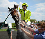 Photo By Michael R. Schmidt.Jakkalberry (IRE) with jockey Colm O'Donoghue aboard wins the inaugural running of the American St. Leger Saturday afternoon at Arlington Park.