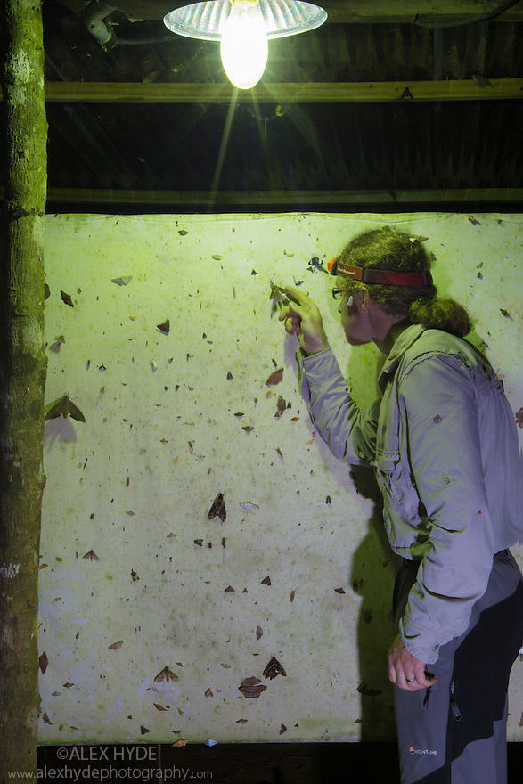 Photographer Alex Hyde identifying moths attracted to a UV light trap at night in the rainforest. Cordillera de Talamanca mountain range, Caribbean Slopes, Costa Rica. May.