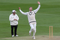 Middlesex CCC 2016