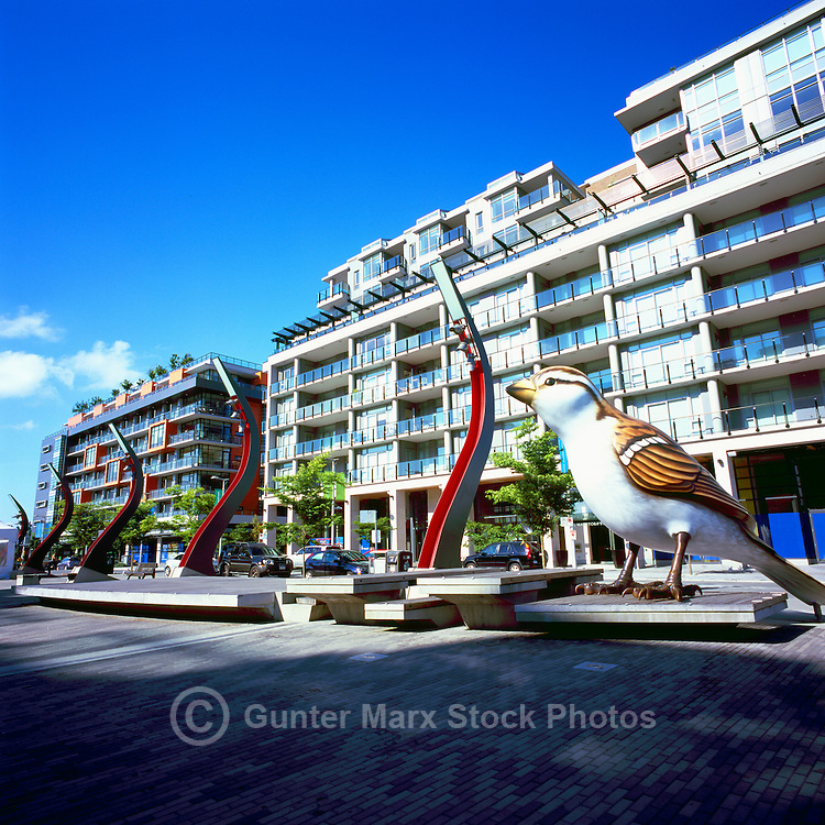 Vancouver, BC, British Columbia, Canada - Giant Sparrow Sculpture ('The Birds' - artist: Myfanwy MacLeod) and Condominium Buildings at Olympic Plaza, at the Village on False Creek (aka Olympic Village)