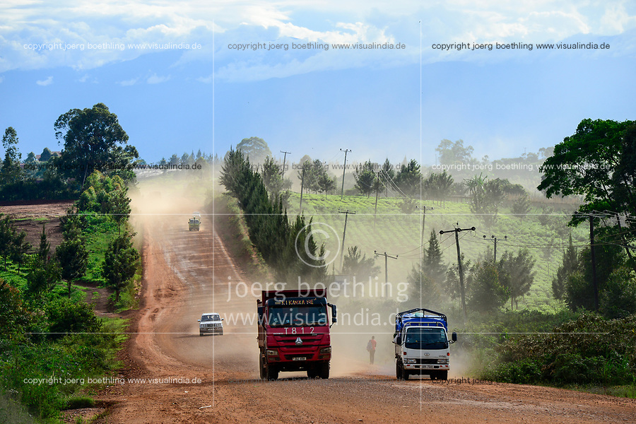 UGANDA, Kasese, dusty road and tea plantation, chinese Howo truck, called red terror / Fahrt von Kampala nach Kasese, Teeplantagen