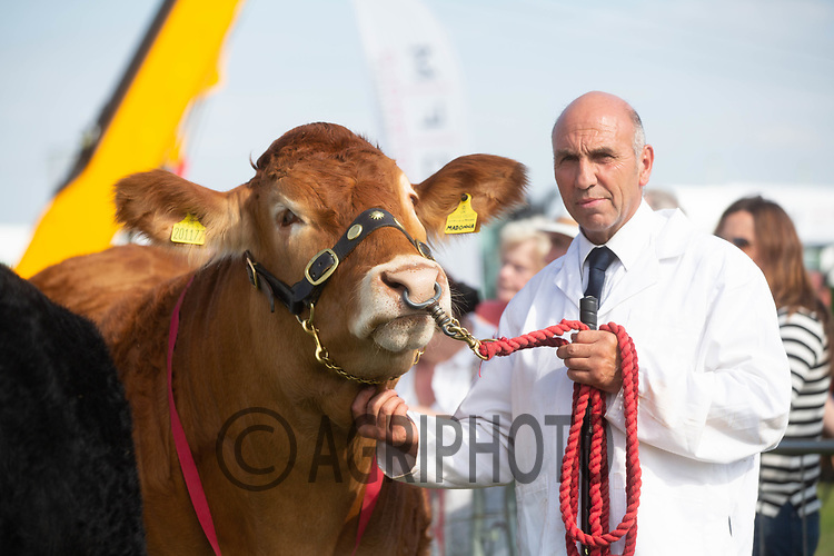 Moreton In Marsh Show 2018<br /> ©Tim Scrivener Photographer 07850 303986<br />      ....Covering Agriculture In The UK....