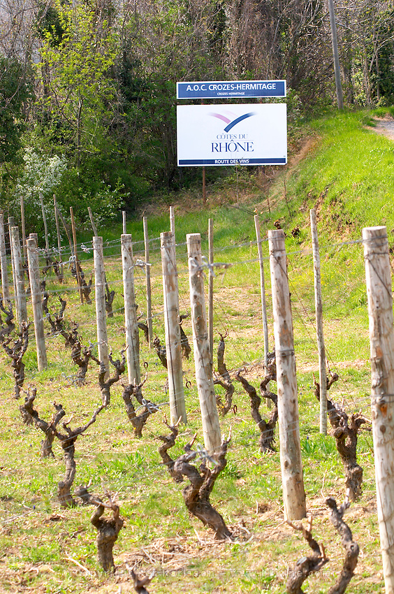 A sign on the limit to Crozes Hermitage indication the border between the appellations and Cotes du Rhone. Vines trained in gobelet The Hermitage vineyards on the hill behind the city Tain-l'Hermitage, on the steep sloping hill, stone terraced. Sometimes spelled Ermitage. Tain l'Hermitage, Drome, Drôme, France, Europe