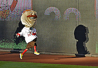 11 October 2012: Washington Nationals Mascot Teddy Roosevelt races to his third consecutive win of the Presidents Race during Postseason Playoff Game 4 of the National League Divisional Series against the St. Louis Cardinals at Nationals Park in Washington, DC. The Nationals defeated the Cardinals 2-1 tying the Series at 2 games apiece. Mandatory Credit: Ed Wolfstein Photo