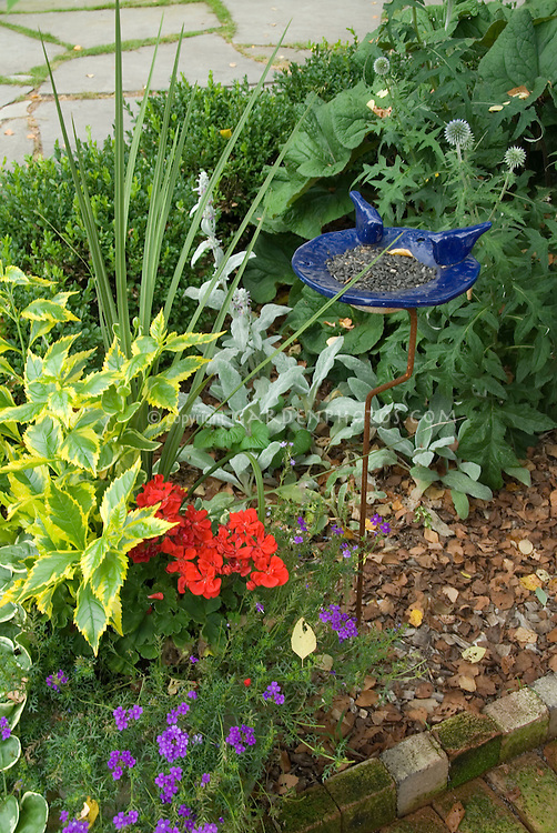 Ceramic blue bird feeder with sunflower seeds in garden of flowers, perennials and shrubs