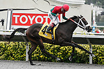 Pat's Back and Patrick Valenzuela win the 6th at Del Mar Race Course in Del Mar, California on August 25, 2012.