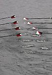 Oars, oar blades, Rowing, race, Opening Day Regatta, Seattle, Washington,