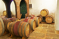 The barrel aging cellar with a few wooden barriques. Vinedos y Bodega Filgueira Winery, Cuchilla Verde, Canelones, Montevideo, Uruguay, South America