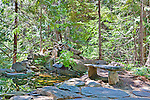 Stone Bench by Forest Pond in Ohme Gardens.  Historic, Wenatchee native gardens with stunning flora, water features, alpine meadows and event venue.
