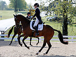 LEXINGTON, KY - APRIL 28: #7 Never Outfoxed and rider Holly Payne Caravella in the warm up ring before their Dressage test in the Rolex Three Day Event, Dressage Day 1, at the Kentucky Horse Park in Lexington, KY.  April 28, 2016 in Lexington, Kentucky. (Photo by Candice Chavez/Eclipse Sportswire/Getty Images)