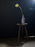 Still life shows a small, wooden stool, with a white, ceramic, bottle-shaped vase on top. From the vase comes a yellow flower. The stem is slightly greater in height to the vase and it leans to the left. A spot light shines on the flower head, illuminating the petals and casting a shadow of the stool. Behind the stool is a dark wall with a metal bolt, situated to the right of the vase. The flooring is beige and cork-like in appearance. There is a slight gap under the door and a light shines through. The photograph was taken at the level of the vase, towards the wall.