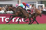 .Arc de Triomphe in Paris.   Workforce (GB) wins the race. Jockey Ryan. L. Moore Owner : K Abdullah. Trainer : M.R. STOUTE .2nd Place Nakayama (JPN)