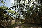 Iles du Salut au large de Kourou.Ruines et vestiges de  l''ïle saint Joseph