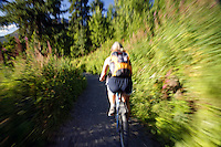 Mountain Bike riding on the Russian Lakes-Resurrection River Trail, Kenai Peninsula, Chugach National Forest, Alaska.