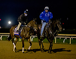 October 30, 2020: Thoughtfully, trained by trainer Steven M. Asmussen, exercises in preparation for the Breeders' Cup Juvenile Fillies at Keeneland Racetrack in Lexington, Kentucky on October 30, 2020. Scott Serio/Eclipse Sportswire/Breeders Cup/CSM