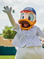 21 March 2015: Disney's Donald Duck entertains fans prior to a Spring Training Split Squad game between the Washington Nationals and the Atlanta Braves at Champion Stadium at the ESPN Wide World of Sports Complex in Kissimmee, Florida. The Braves defeated the Nationals 5-2 in Grapefruit League play. Mandatory Credit: Ed Wolfstein Photo *** RAW (NEF) Image File Available ***