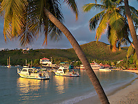 Cruz Bay Harbor with palm trees. St. John, Virgin Islands.