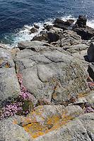 An der Südspitze von Little Sark, Insel Sark, Kanalinseln