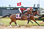 HOT SPRINGS, AR - APRIL 13:  Apple Blossom Handicap at Oaklawn Park on April 13, 2018 in Hot Springs,Arkansas.  #4 Beach Flower with jockey Ramon A. Vazquez. (Photo by Ted McClenning/Eclipse Sportswire/Getty Images)