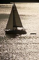 Europe/Croatie/Dalmatie/ Ile de Vis/ Vis: voilier à l'entrée du port dans la lumière du soir