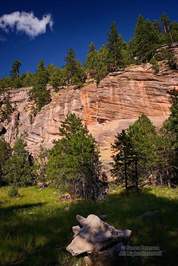 Sandy's Canyon, Coconino National Forest, Arizona