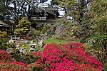 JAPANESE GARDEN AT GOLDEN GATE PARK, SAN FRANCISCO