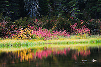 Handkerchief Lake Flathead National Forest Montana in the fall.
