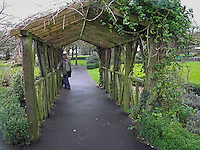 An interesting vine arbor in Adare Village Park in Ireland.